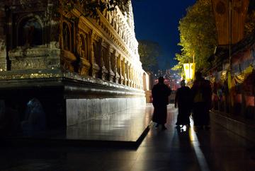 Walking meditation at the Bodhi Tree, India