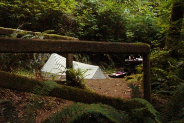 Redwood NP Campsite