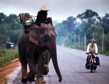 Bicycle and elephant
