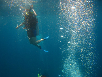 Diving in Placencia, Belize