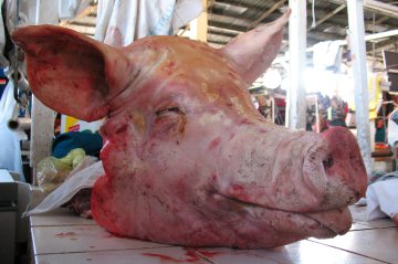 Pig head at San Pedro Market, Cuzco